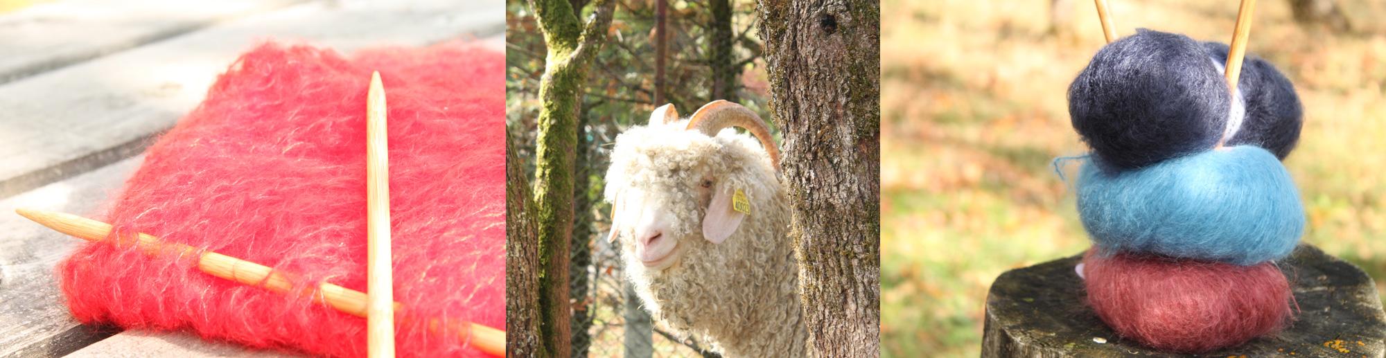 Photo pelote, tricot en mohair et chèvres angora
